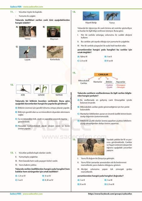 Sadece Fen 5. Sınıf Deneme 2