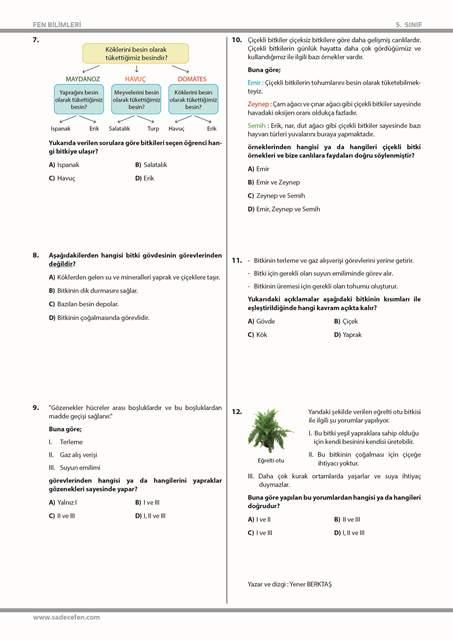 5. Sınıf Fen Bilimleri Bitkiler Test 1