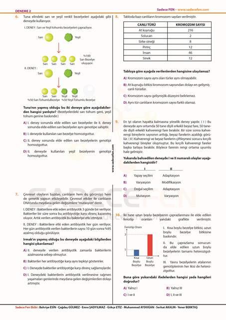 LGS Fen Bilimleri Denemesi 2