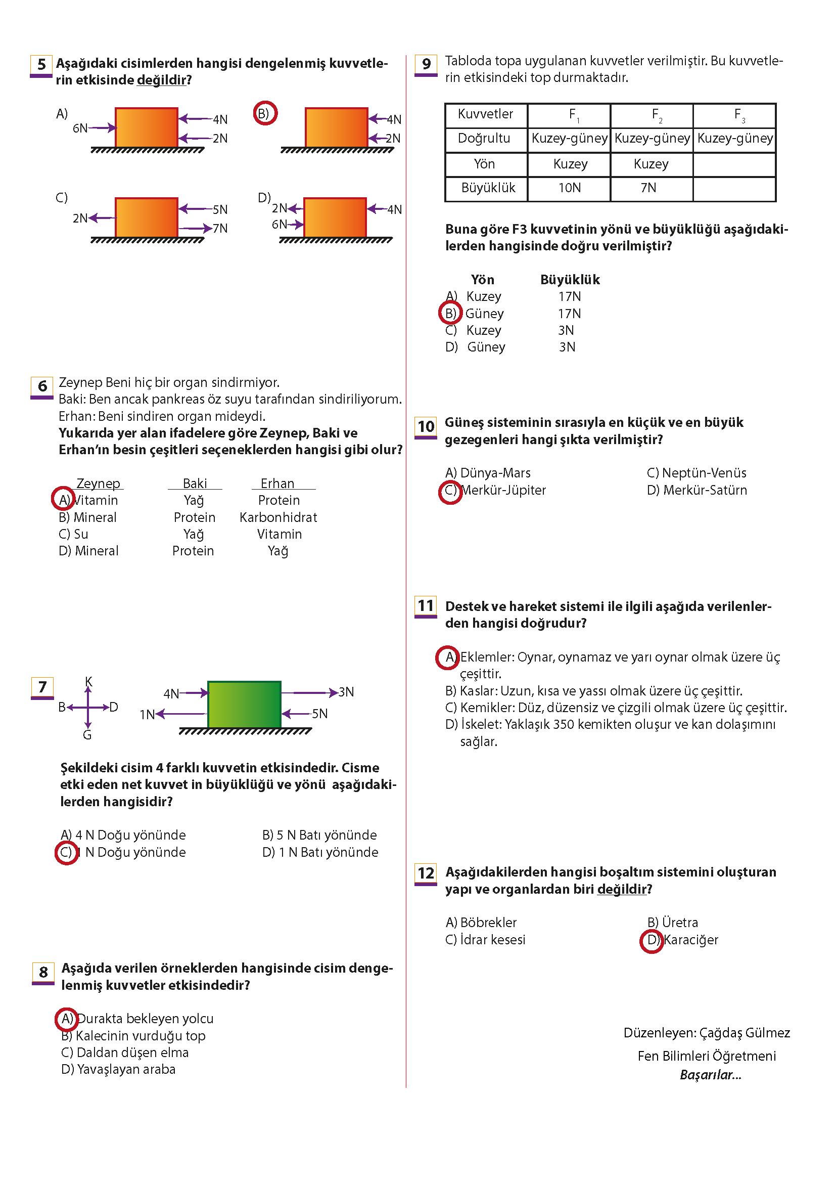 2019 – 2020 6. Sınıf Fen Bilimleri 1. Dönem 2. Yazılı Sınavı